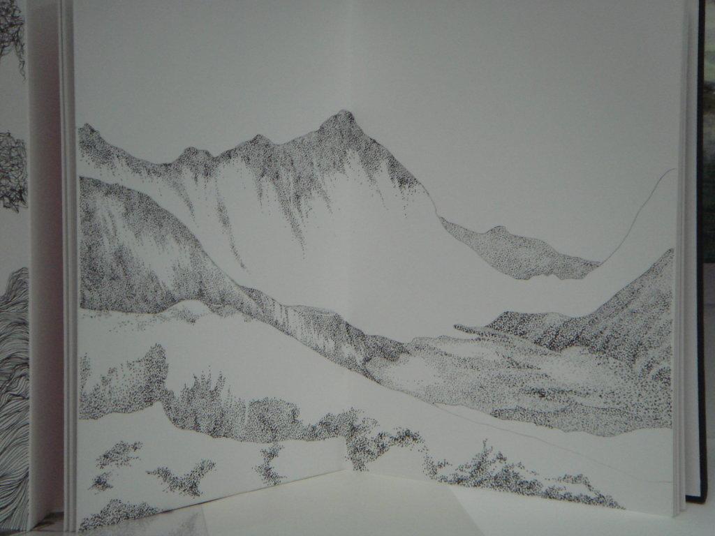 Artist Book -detail
