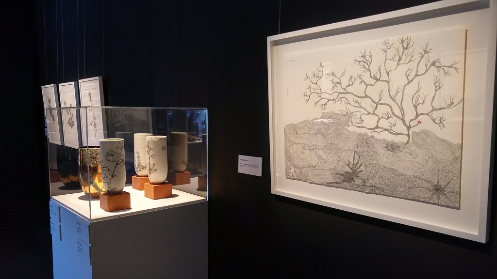 The Great Barrier Reef inspired works by Rafferty and Smith